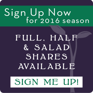 sign-up-graphic-2016